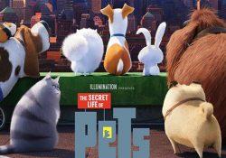 Evcil Hayvanların Gizli Yaşamı Türkçe Dublaj indir – HD (2016)