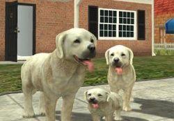 Dog Sim Online Para Hileli Mod Apk – v3.5